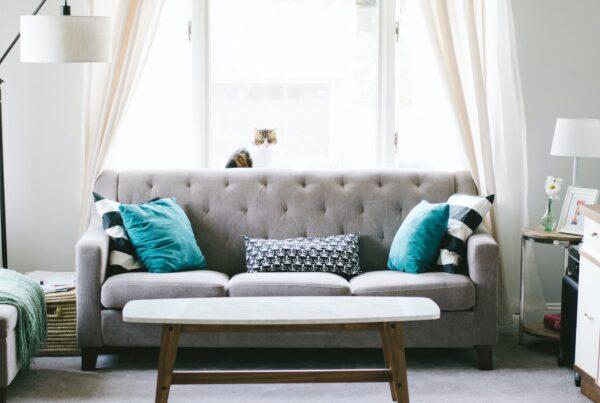 natural light in living room